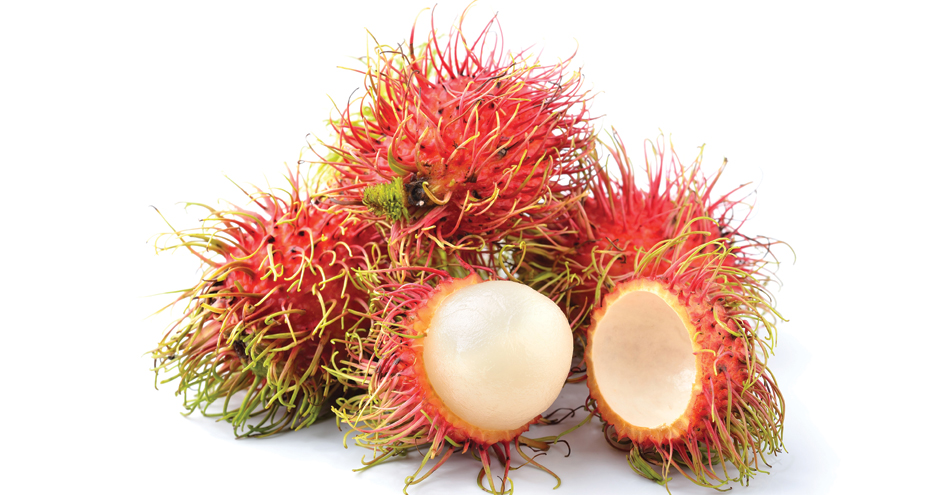 Getting to Know Exotic Rambutan