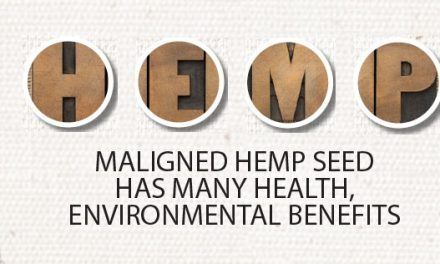 Maligned Hemp Seed Has Many Health, Environmental Benefits