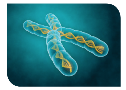 Epigenetics – Above All, You're in Charge of Your Well-Being