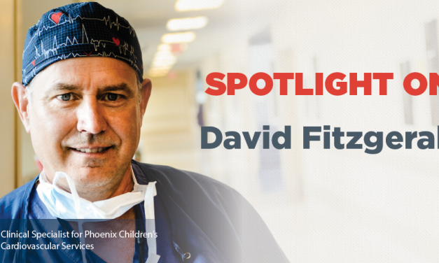 Spotlight On: David Fitzgerald