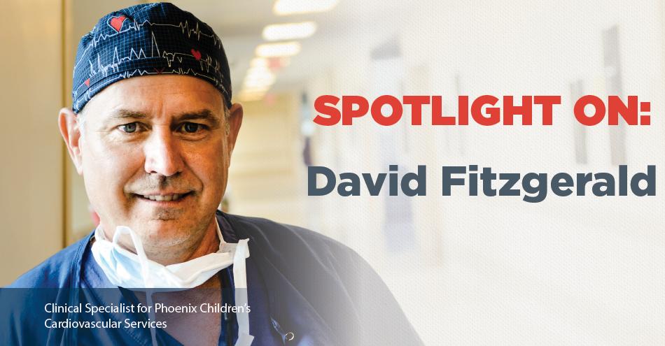 Spotlight On: David Fitzgerald