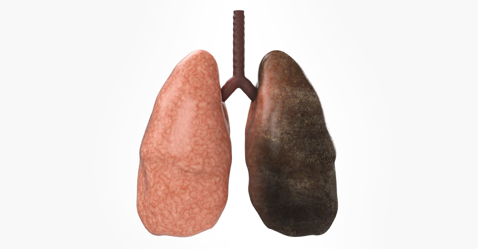So You Want to  Quit Smoking? Knowledge Is Power