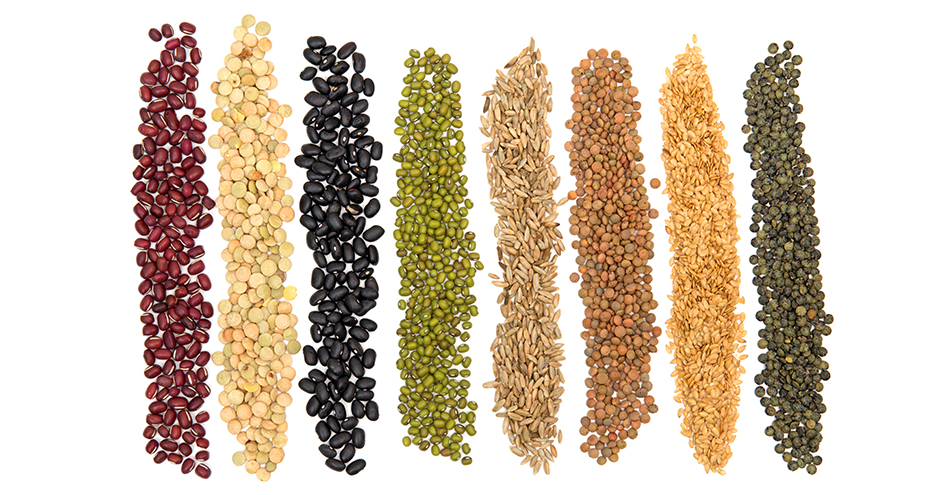 Whole Grains: Are Packed With Flavor, Texture