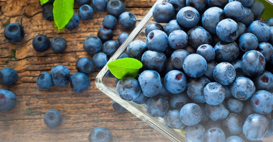 Environmental Nutrition: All about blueberries