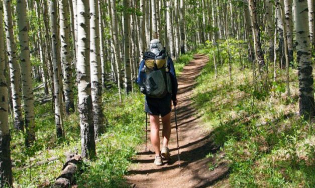 Take a Hike for Better Health