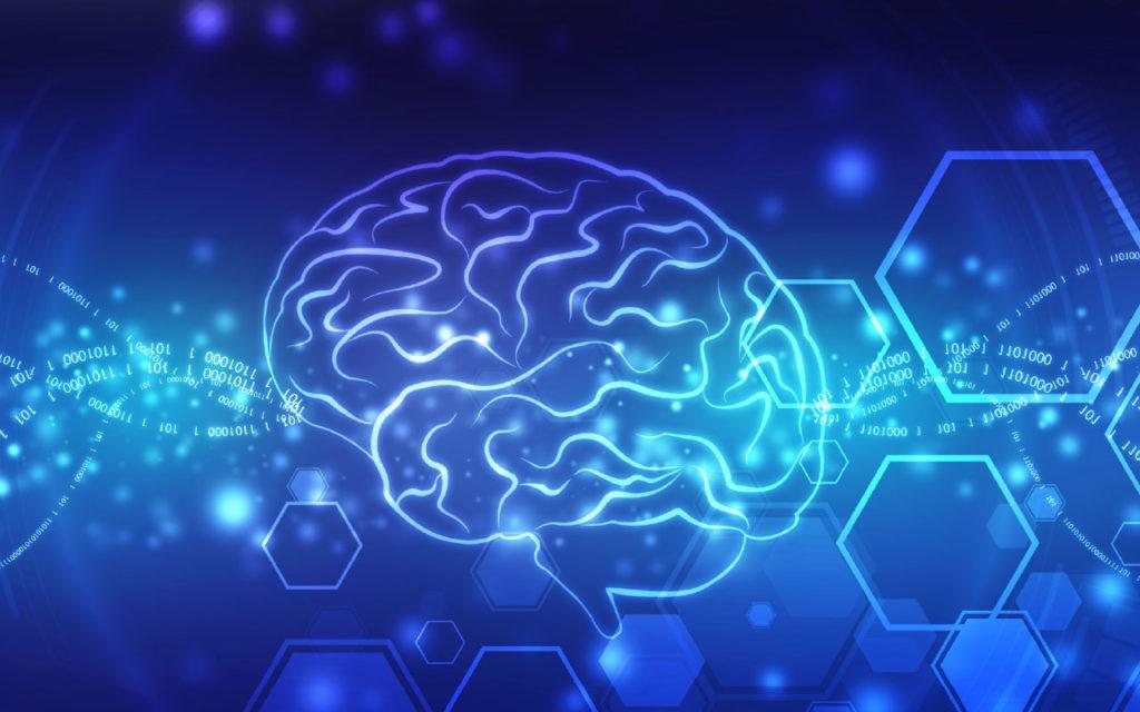 Study: Short Breaks May Help Brains Learn New Skills